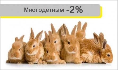 Скидки МНОГОДЕТНЫМ -5%